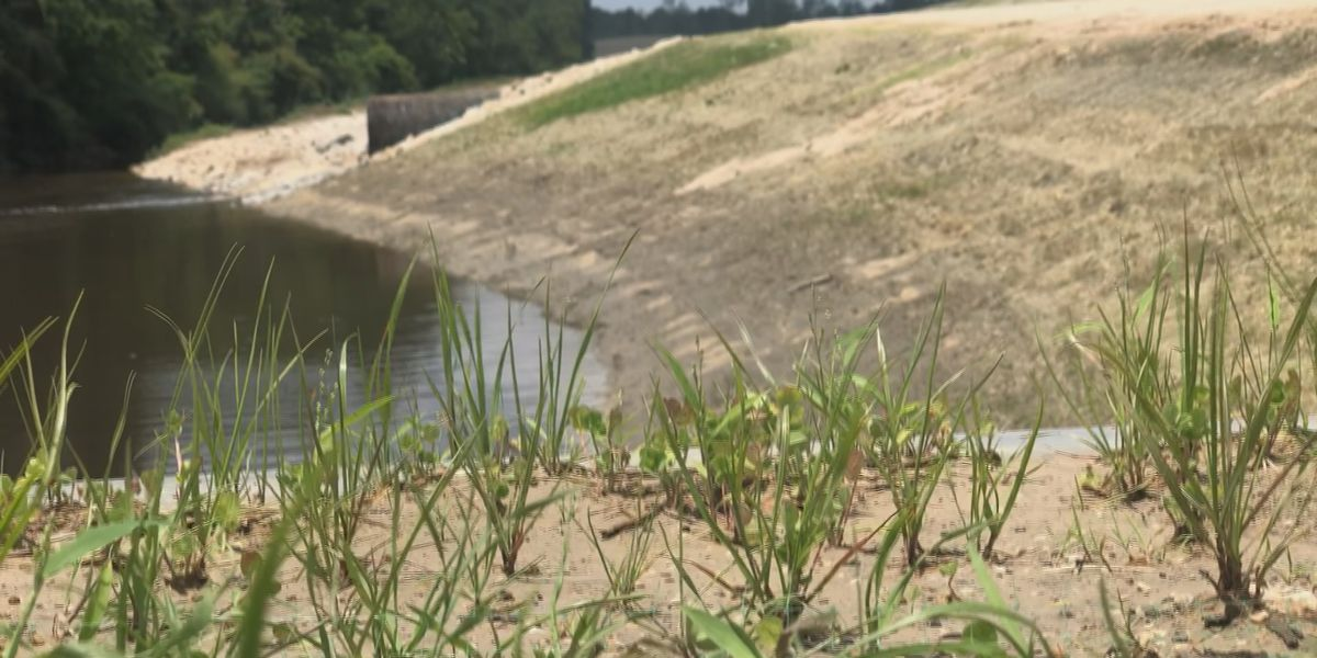 Moss Bluff drainage ditch proves to be effective