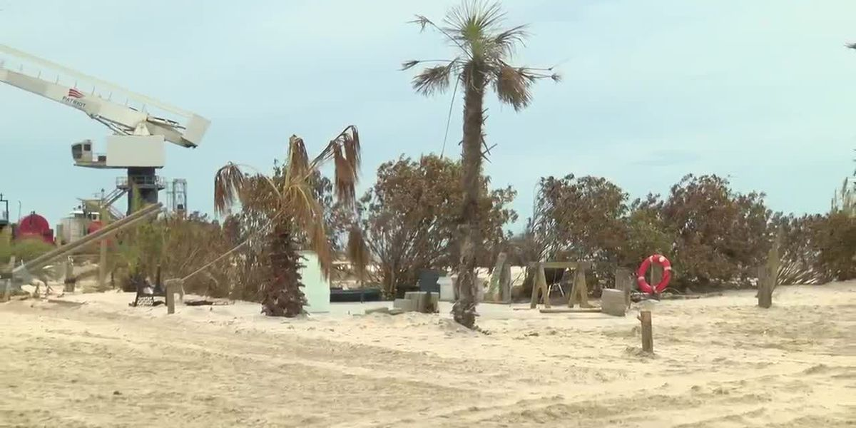 Rutherford beach residents disheartened after returning home