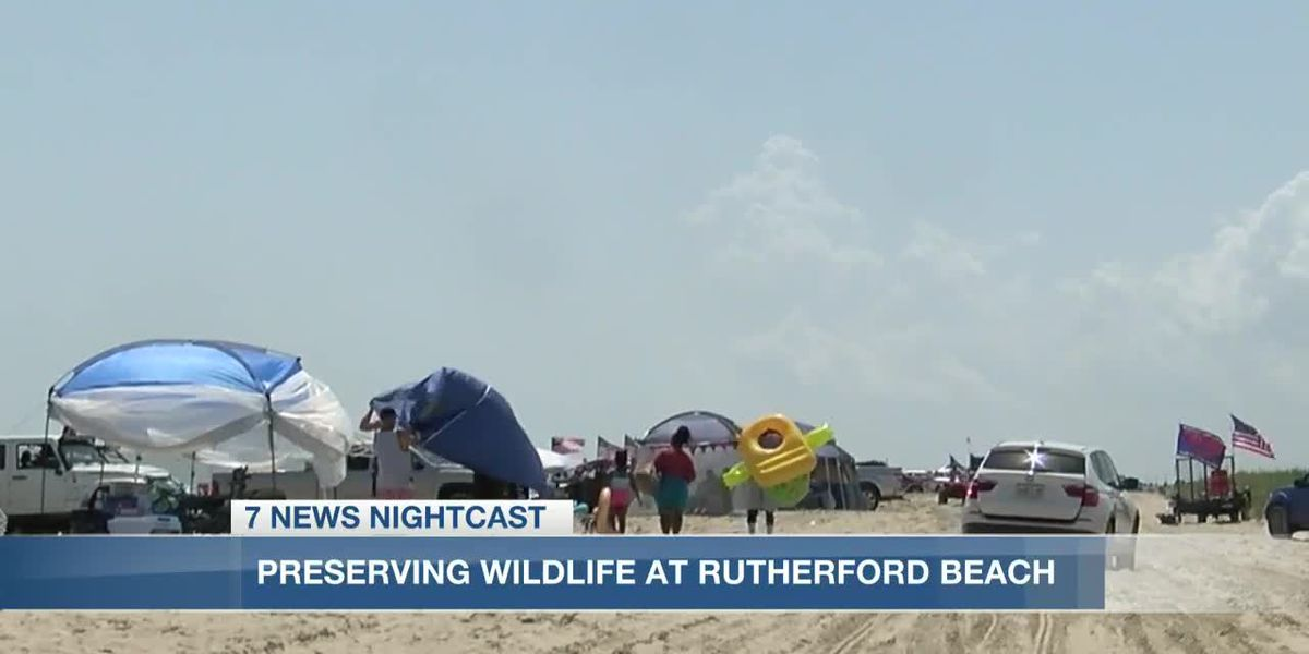 Rutherford Beach conservation area damaged