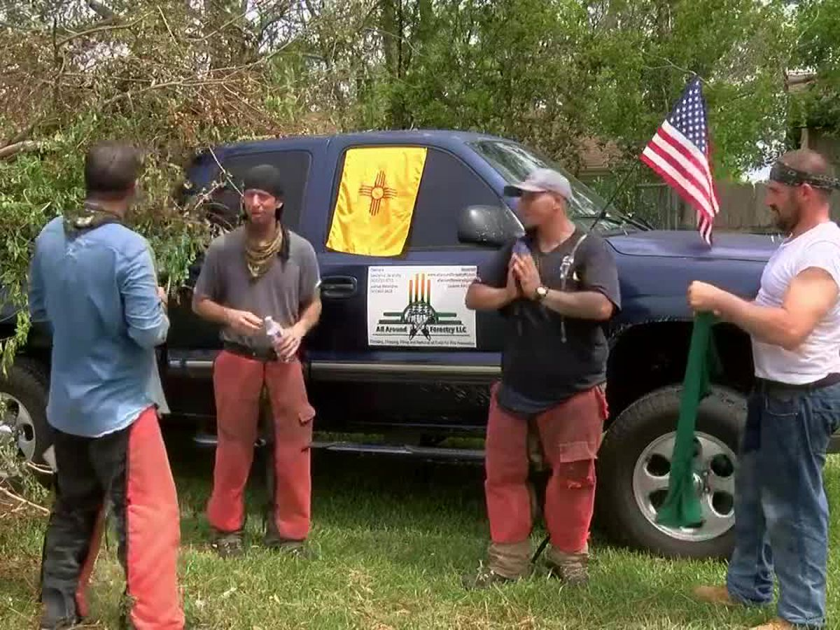 Forestry company owned by former inmates help SWLA with tree removal