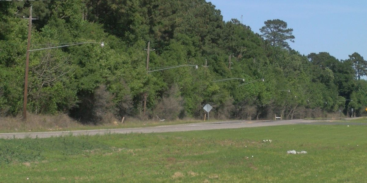 LC city council defers proposed RV park off Highway 90