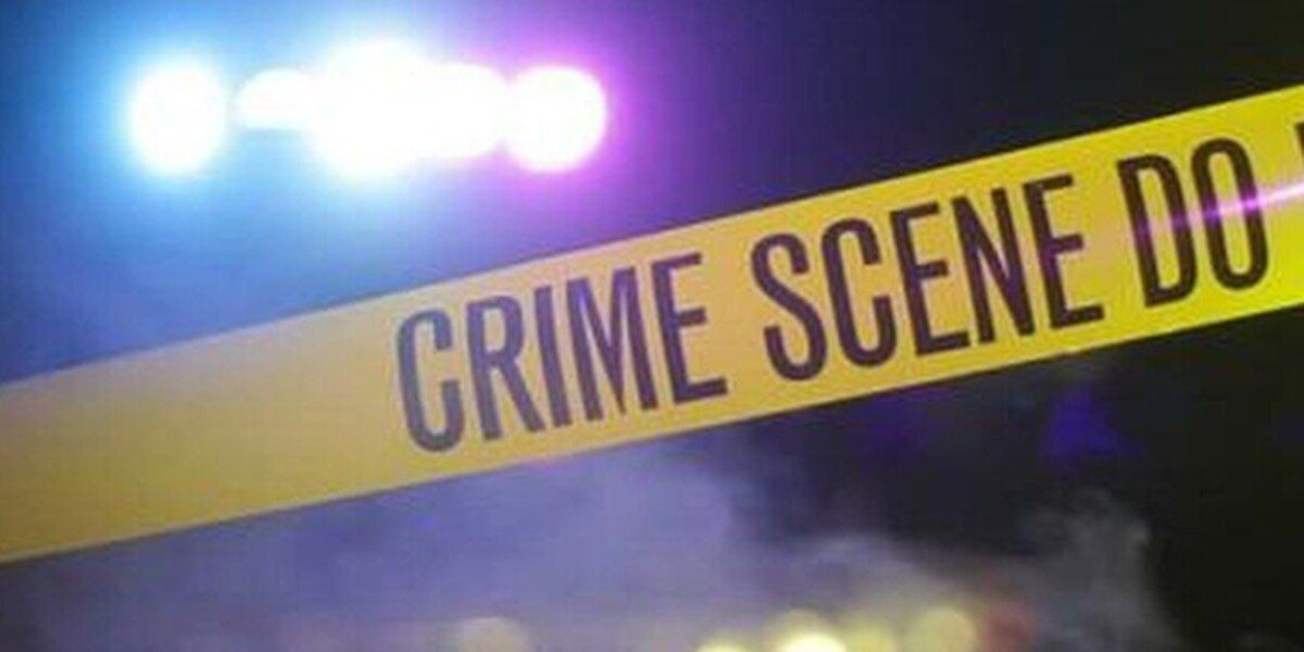 Attempted murder reported in Moss Bluff
