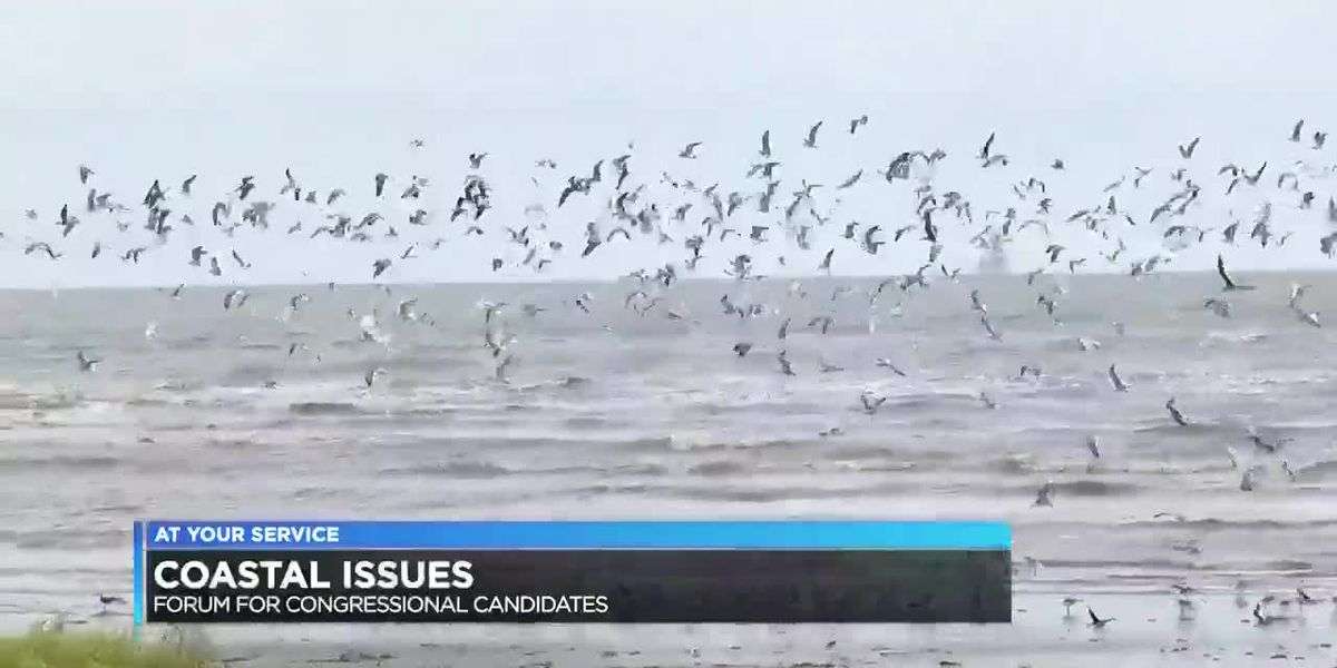 Coalition to Restore Coastal Louisiana holding congressional forum