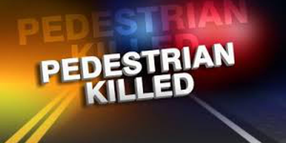 State police identify pedestrian struck and killed on Hwy 165