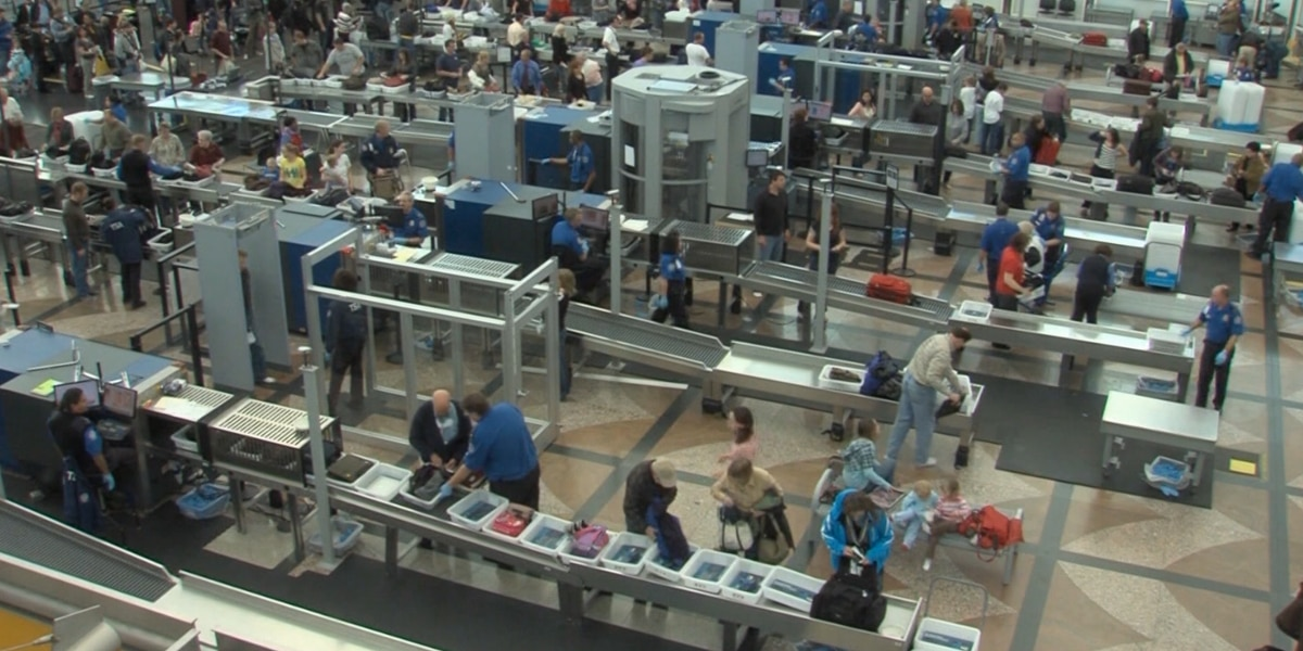 TSA seized record number of guns at US airports last year, report says