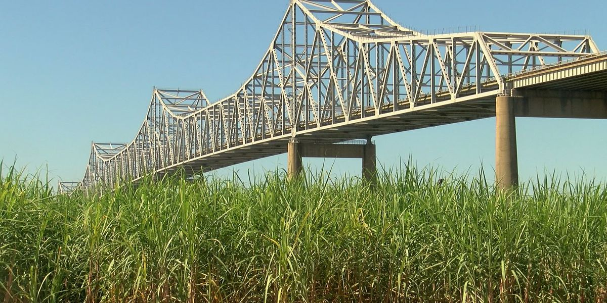 DOTD: Sunshine Bridge should have come down after barge hit