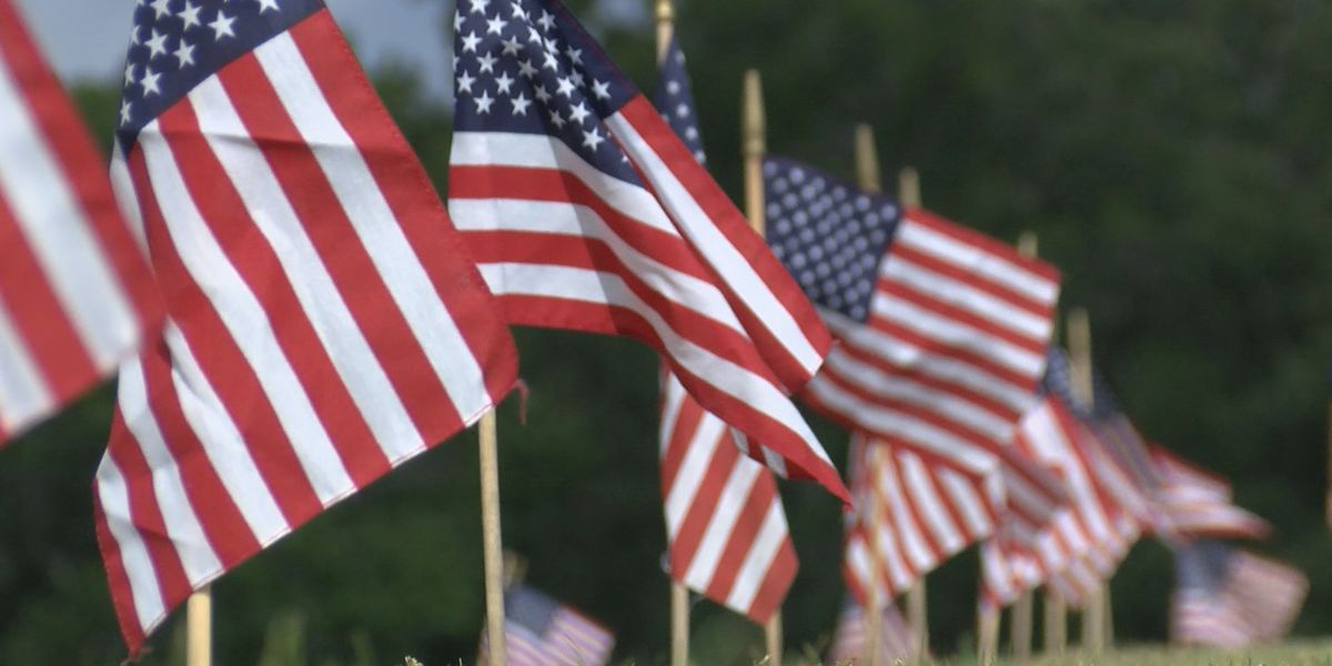 Veterans Day events in SWLA