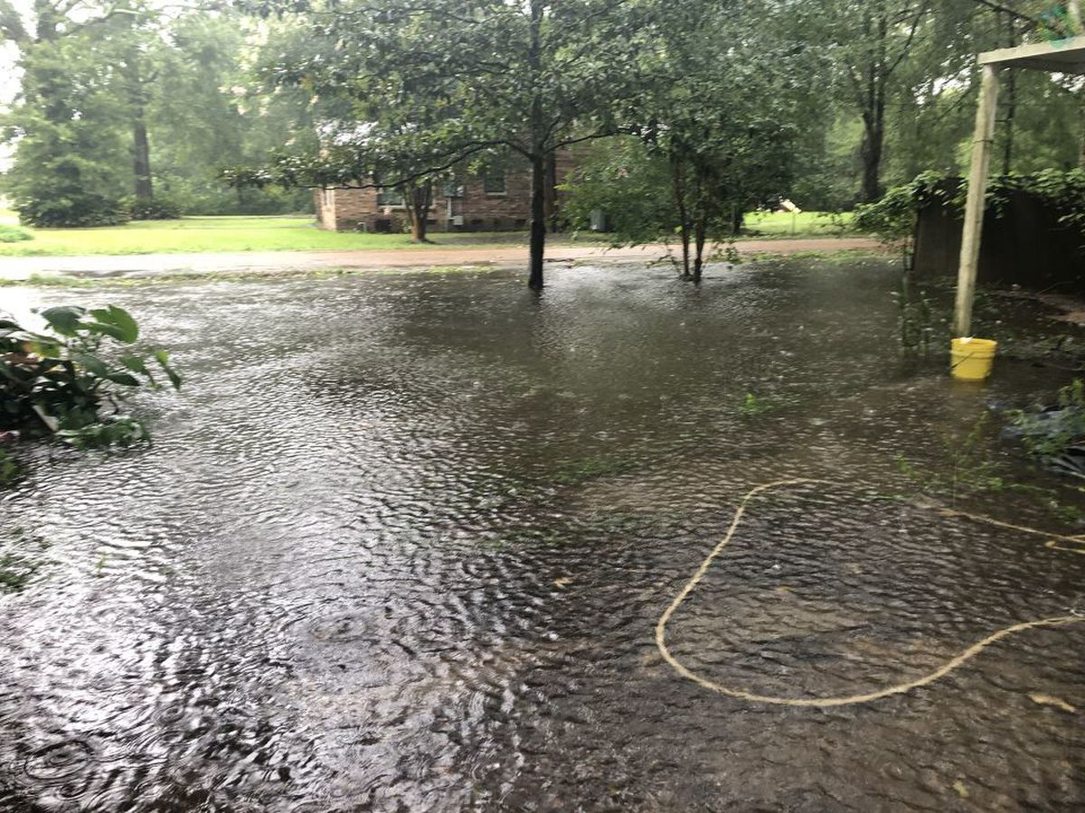 Assessment teams to survey damage in Allen Parish