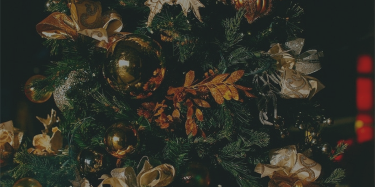 How to take care of your Christmas tree so that it doesn't become a fire hazard