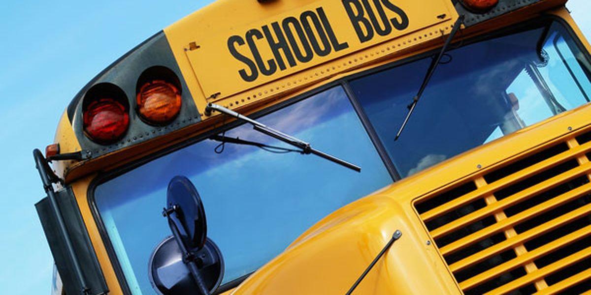 Calcasieu Parish bus involved in crash