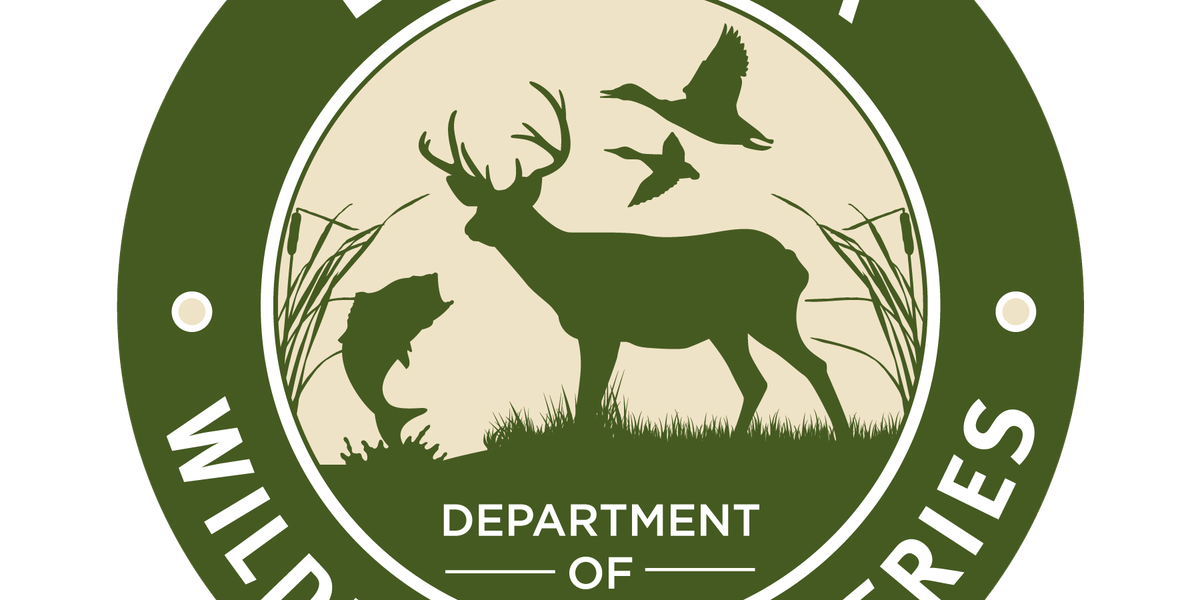 Deer Hunting Season to Reopen in Portion of Northeast and Central Louisiana on Saturday Morning