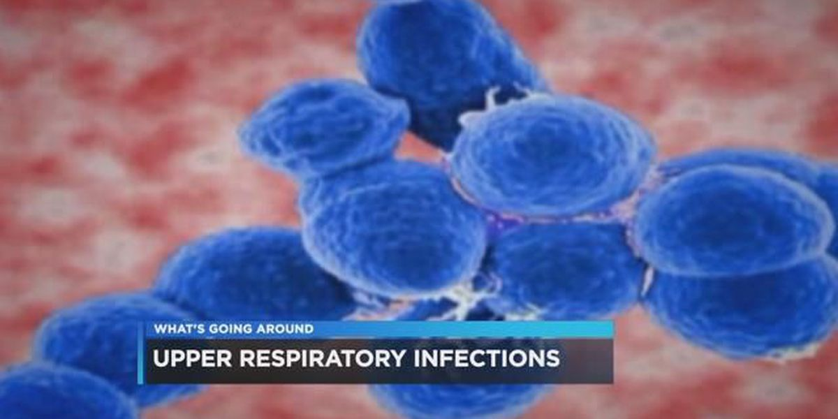 What's Going Around: upper respiratory infections