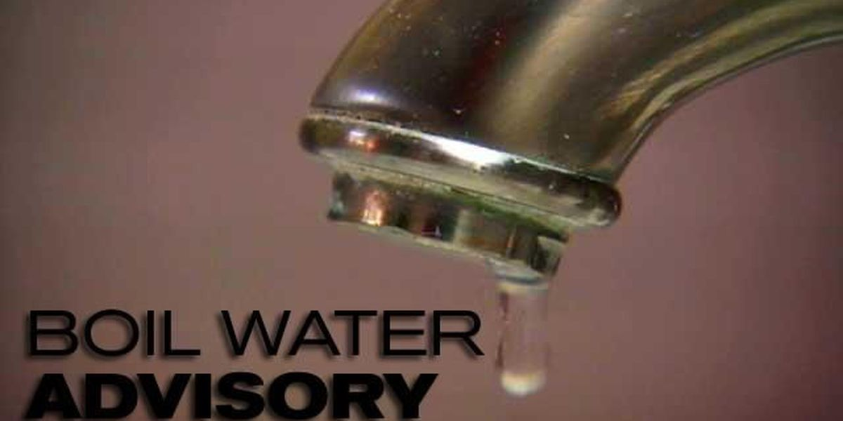 Boil advisory issued for Lacassine