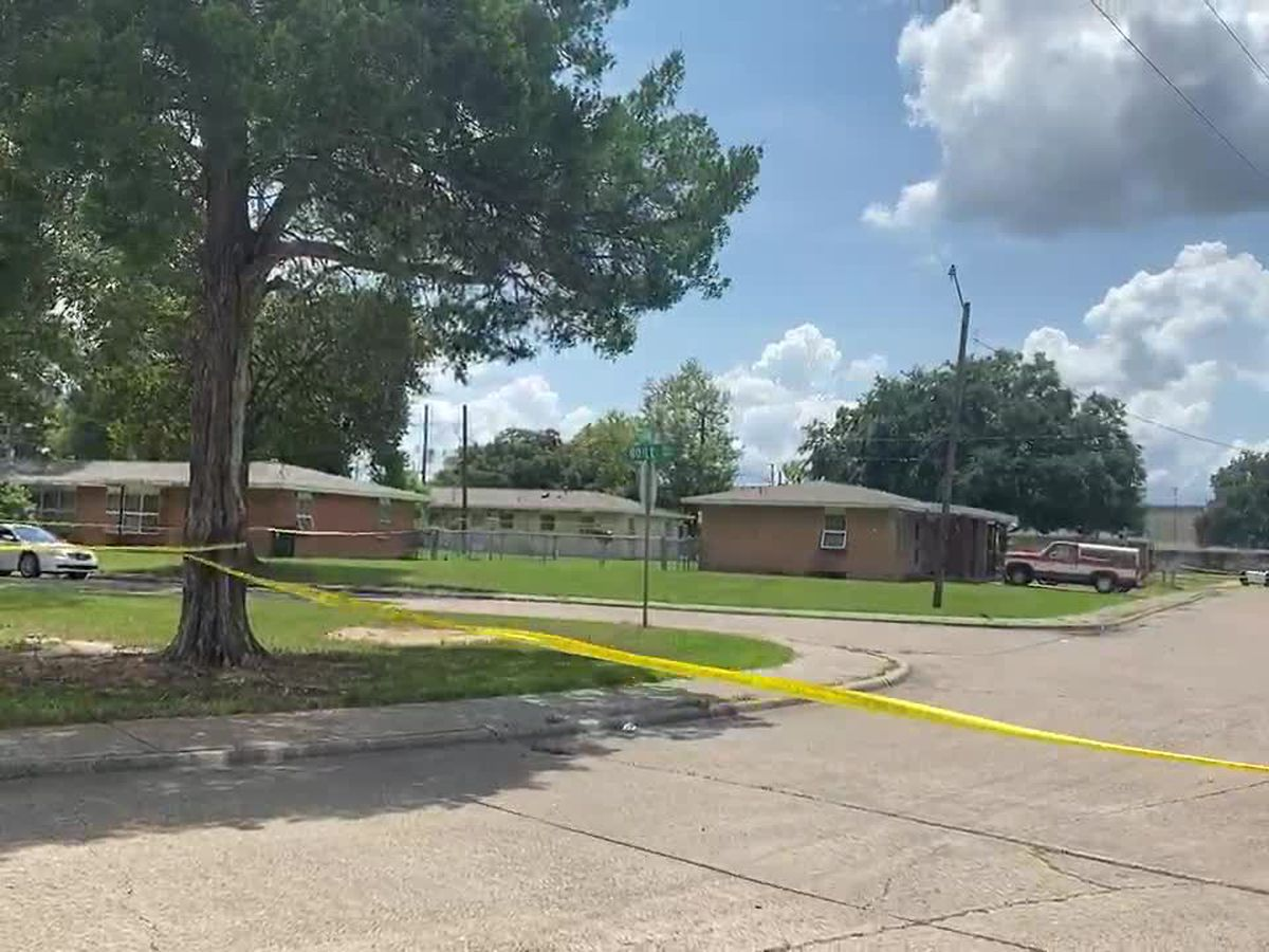 Police investigating Lena Ave. homicide