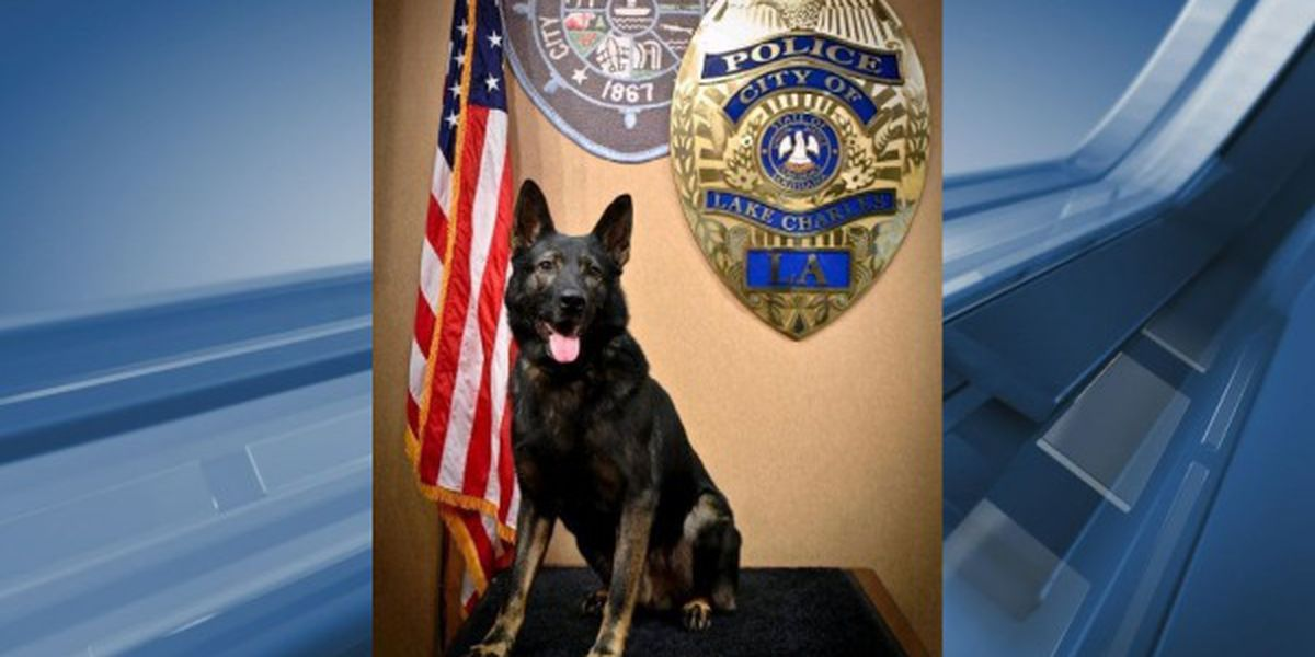 "Lake Charles Police lay to rest retired K9 ""Bobby"""