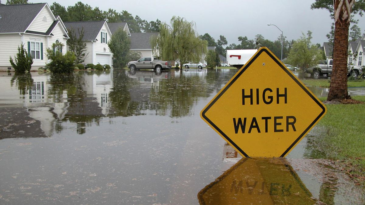 Hurricane Special: Louisiana Insurance Commissioner on state of flood insurance amidst pandemic