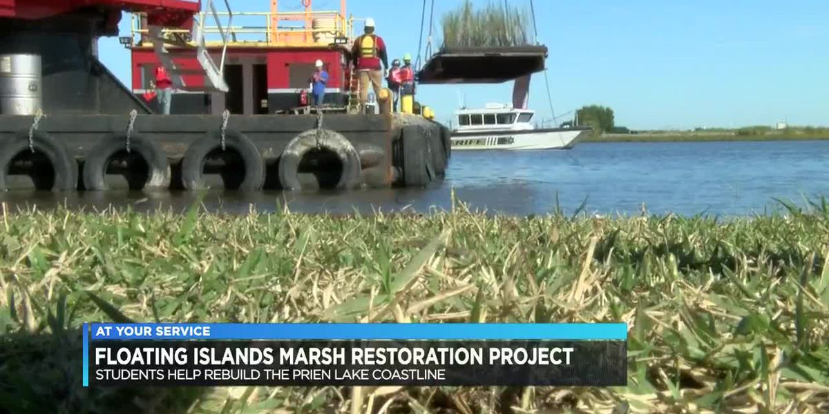 Local conservation groups and students create new marsh in Prien Lake