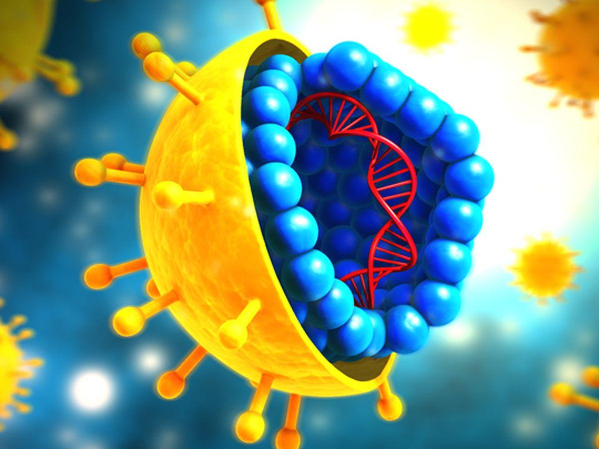 Louisiana close to groundbreaking model to treat, cure Hepatitis C patients