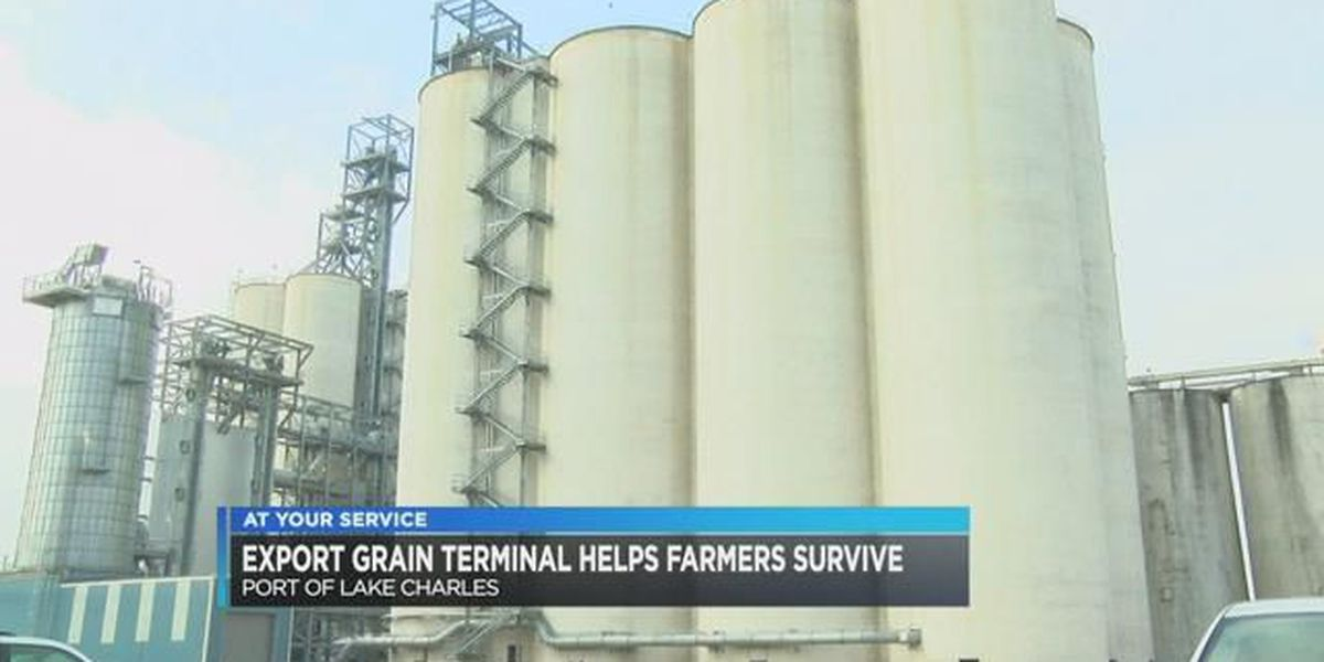 CEO of export grain terminal honored for helping rice farmers