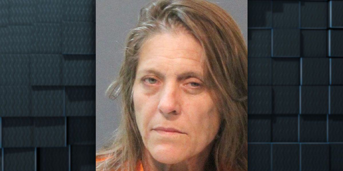 Woman arrested for DWI after allegedly backing into patrol vehicle, leading deputies on chase