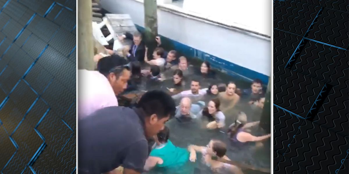 Twenty people fall into the water after dock collapses at South Carolina restaurant