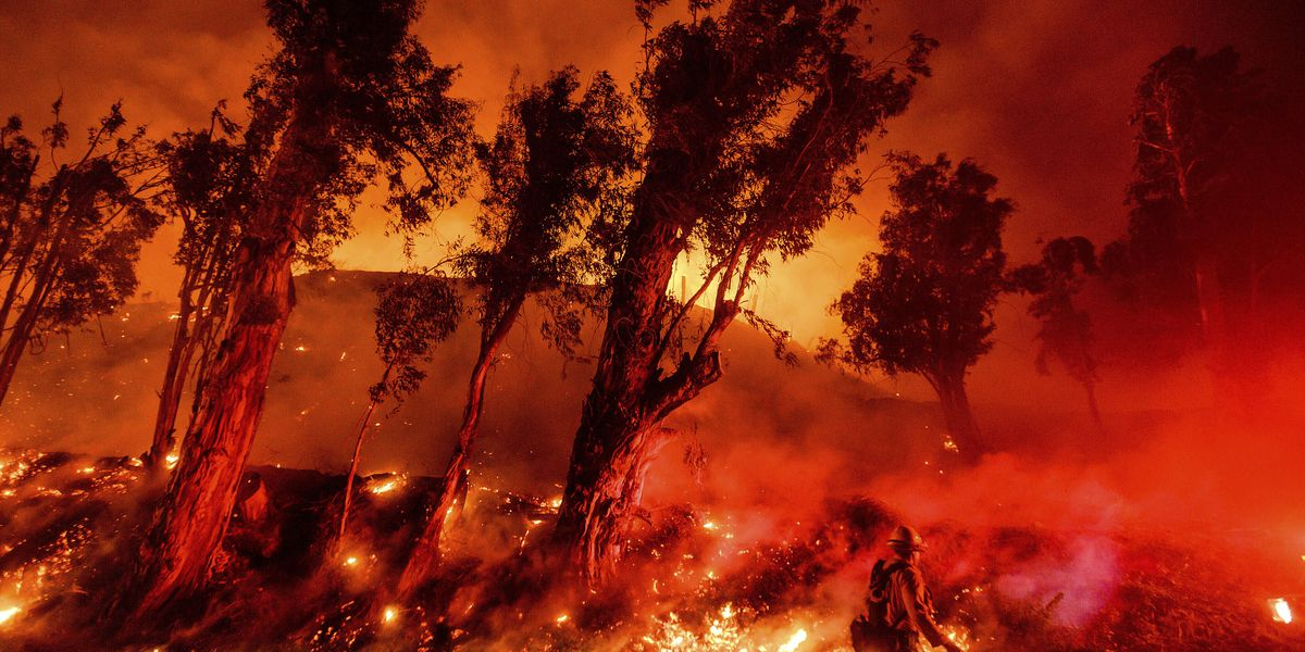 Earth had its hottest decade on record in 2010s