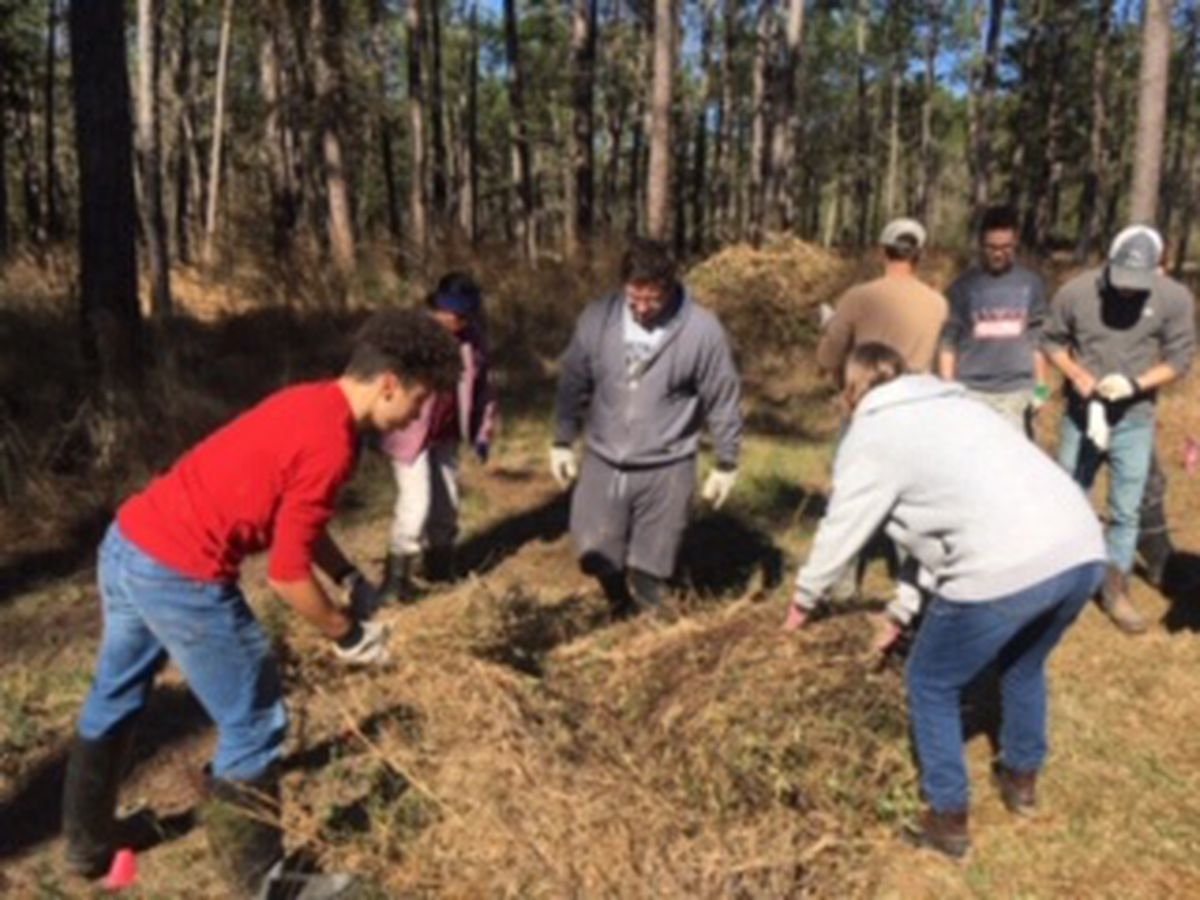 Boy Scout leads work to restore Cajun prairie