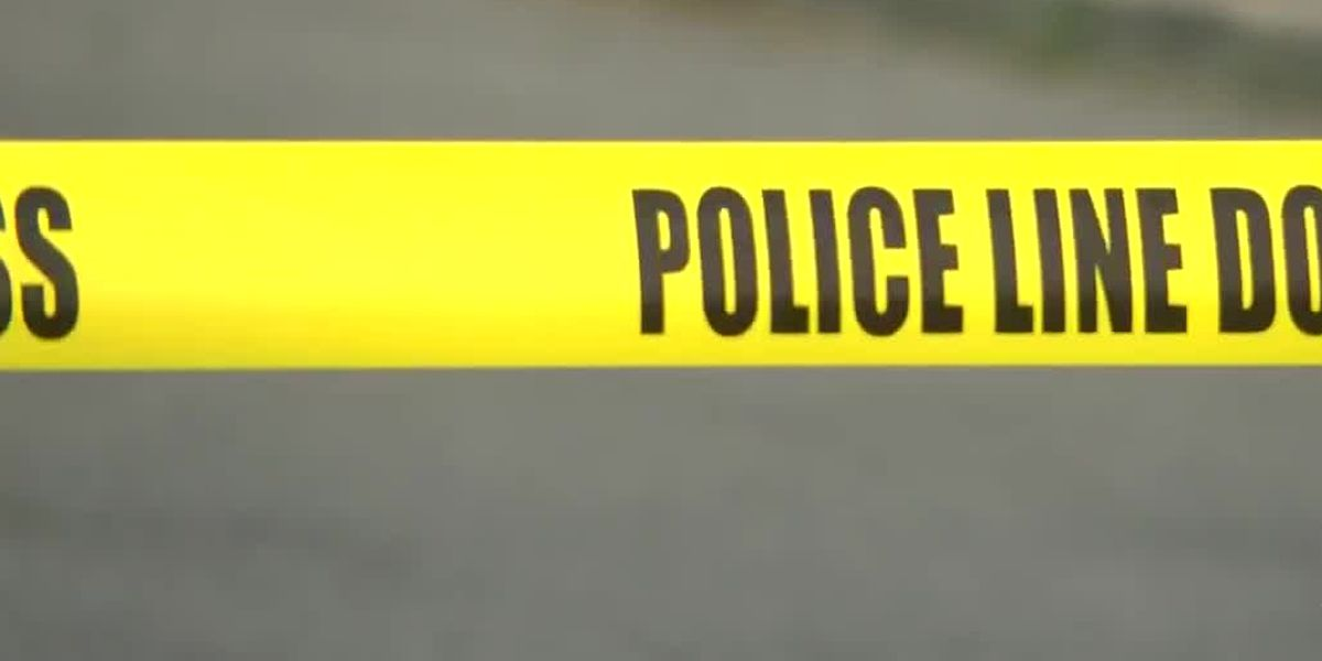 15-year-old dies after stabbing at Walmart on La. 14