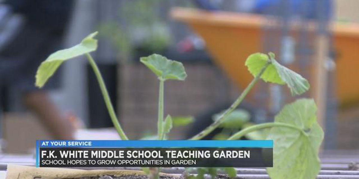 F.K. White Middle School hopes to grow opportunities with teaching garden