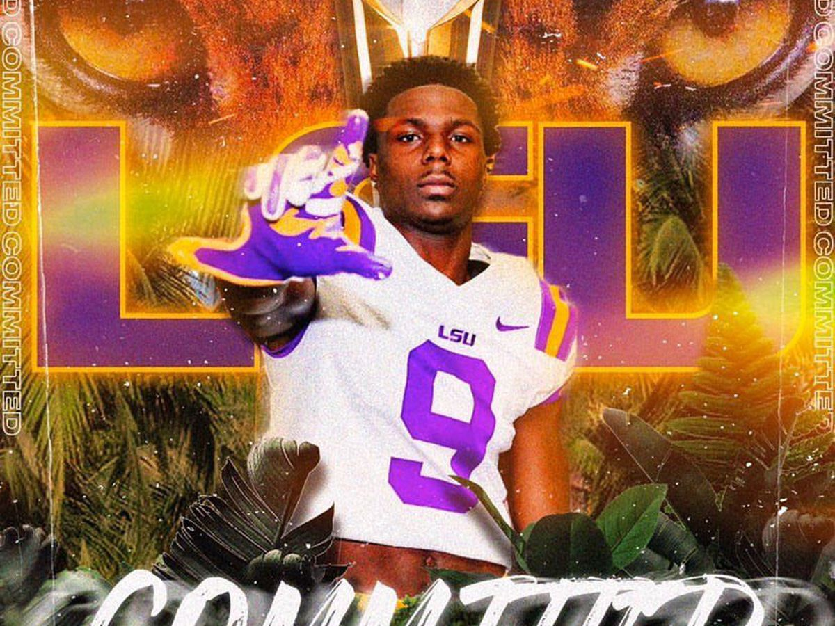 Florida safety Dakota Mitchell commits to LSU