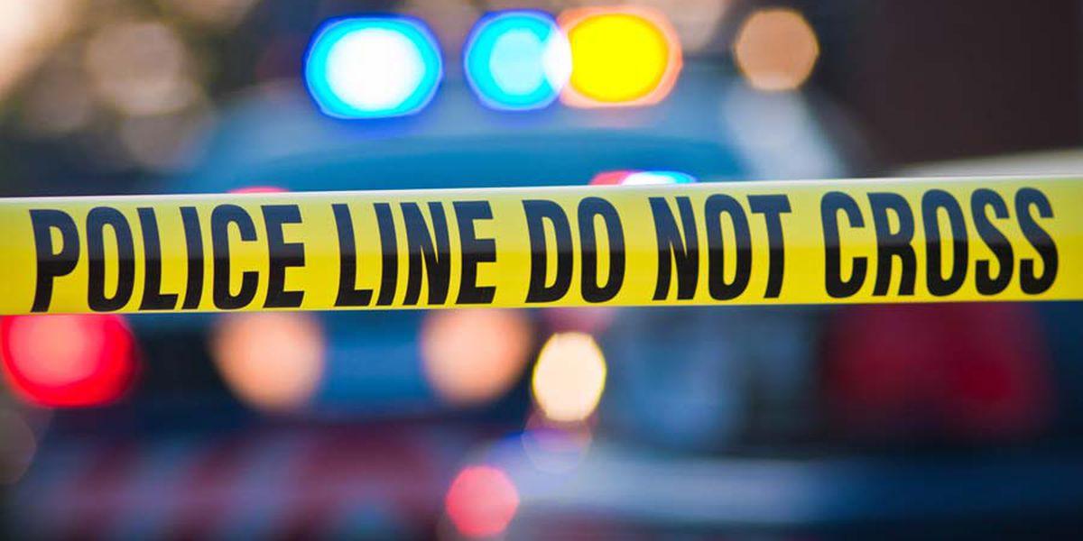 Pedestrian struck, killed in hit-and-run
