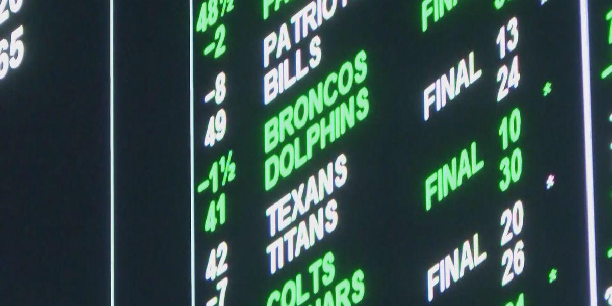 Fantasy sports betting edges closer to reality in Louisiana