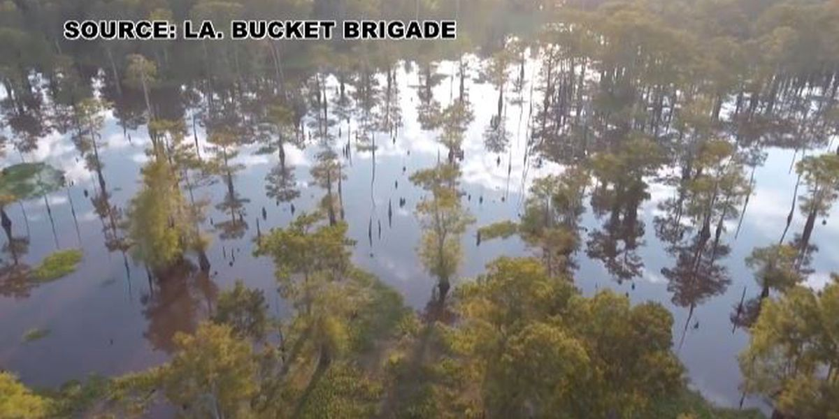 Bayou Bridge Pipeline before Third Circuit Wednesday