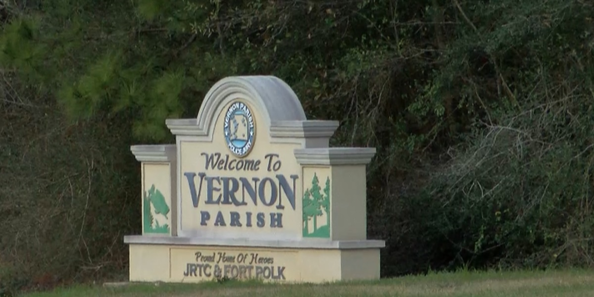 Vernon Parish Sheriff's Office releases crime stats from 2018 and 2019