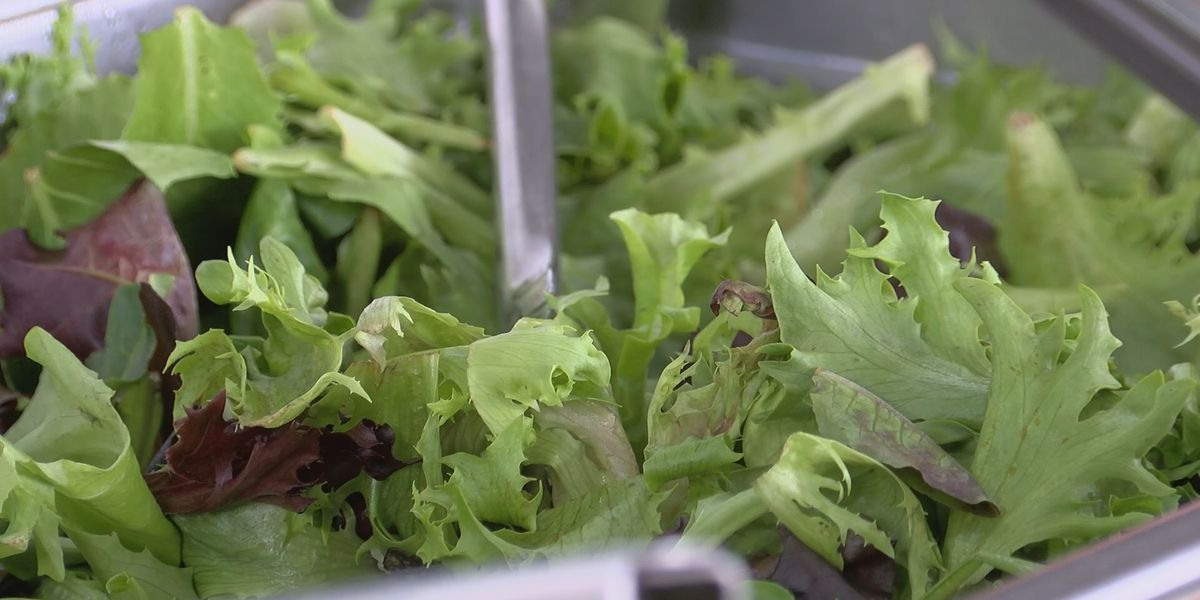 Local restaurant says CDC's romaine lettuce recall won't effect the quality of their meals