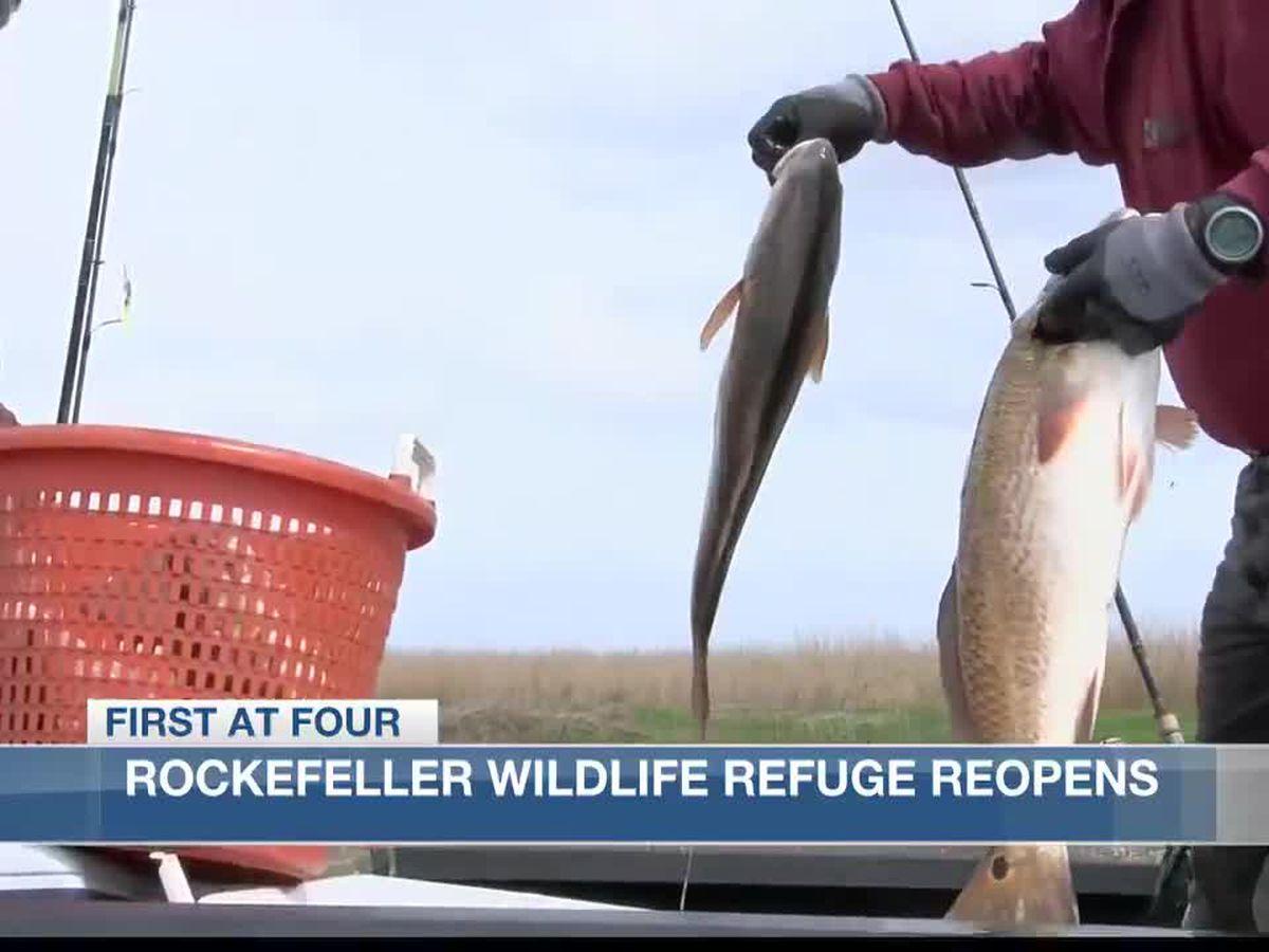 Rockefeller Wildlife Refuge Reopens Monday, March 1.