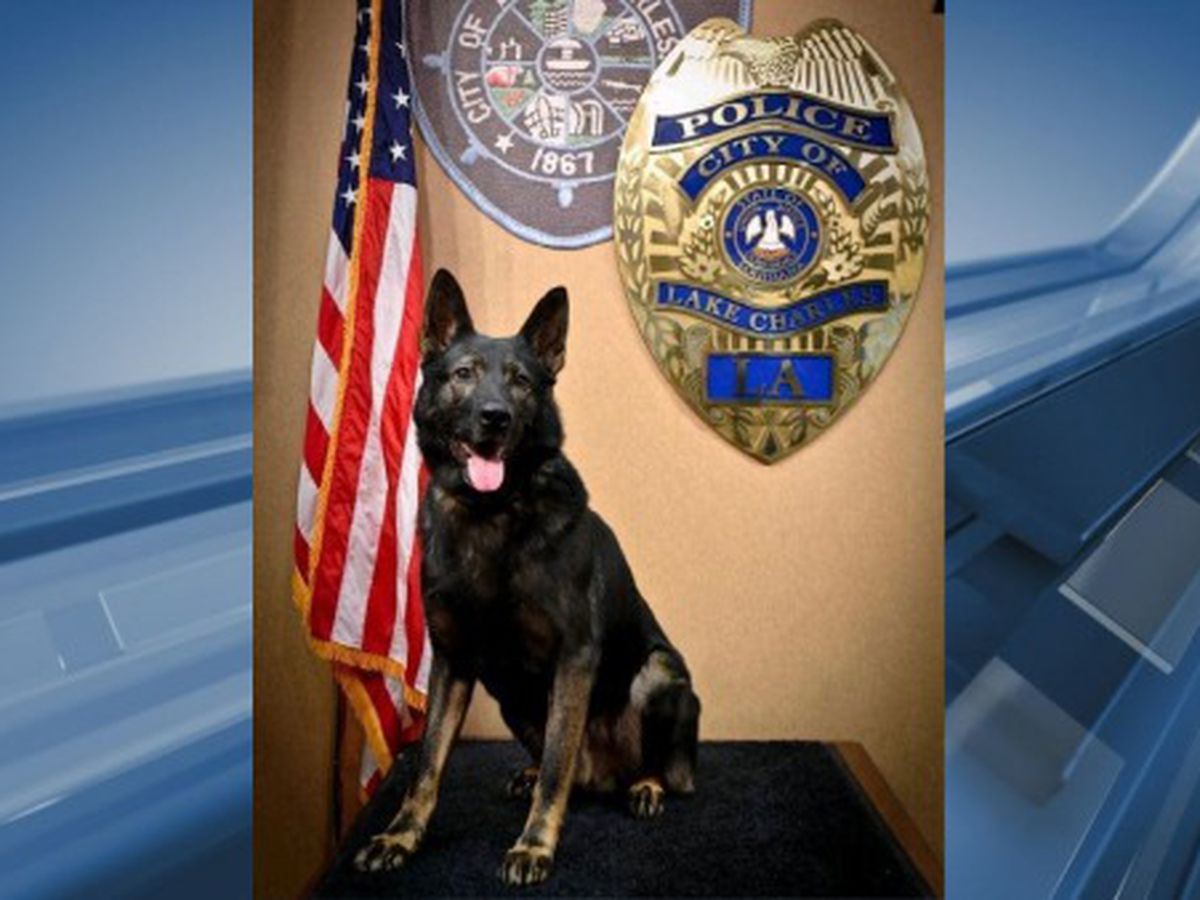 """Lake Charles Police lay to rest retired K9 """"Bobby"""""""