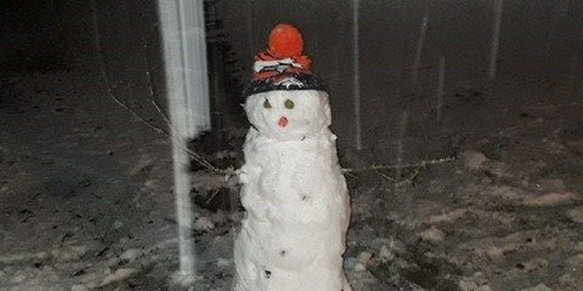 SNOW DAY: Closures in Southwest Louisiana - All area state offices closed today