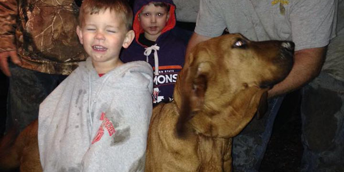 Dog deemed a hero after finding missing toddler