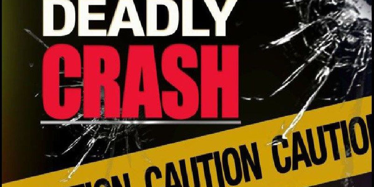 Pitkin Man Killed in Vernon Parish Crash