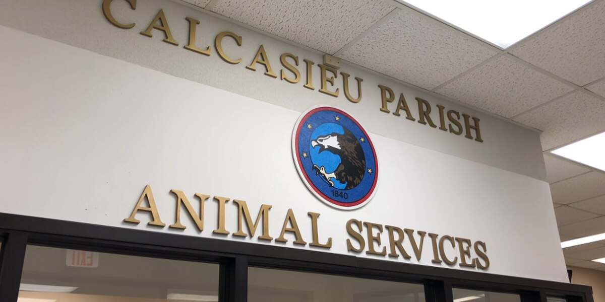 Calcasieu Animal Services provides updates on 2016 major upgrades
