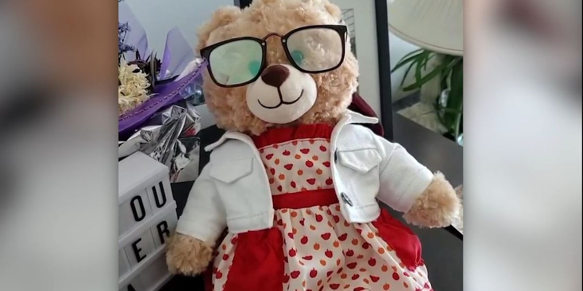 Stolen teddy bear with dying mother's message is returned