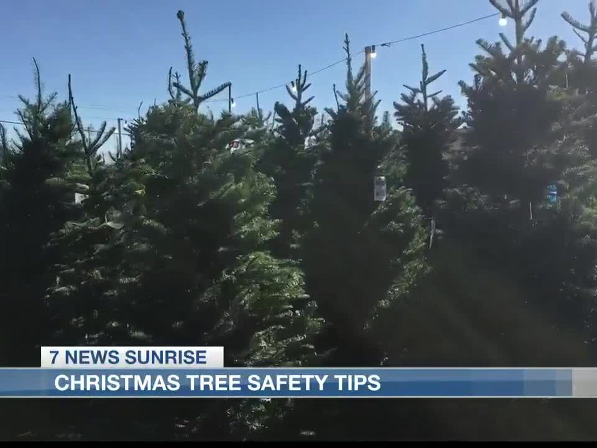 Tips for Christmas tree safety