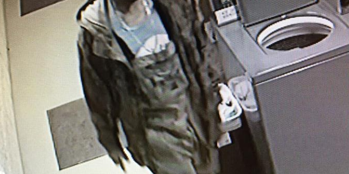BPSO seeking public's assistance to identify burglary and theft suspect