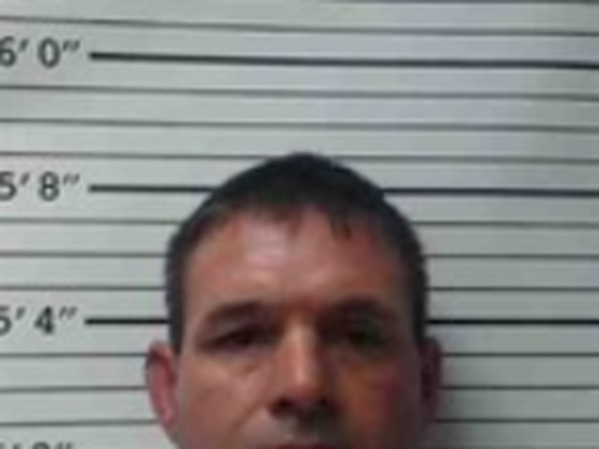 Allen Parish man allegedly hits officer with mirror of truck, faces 10 charges