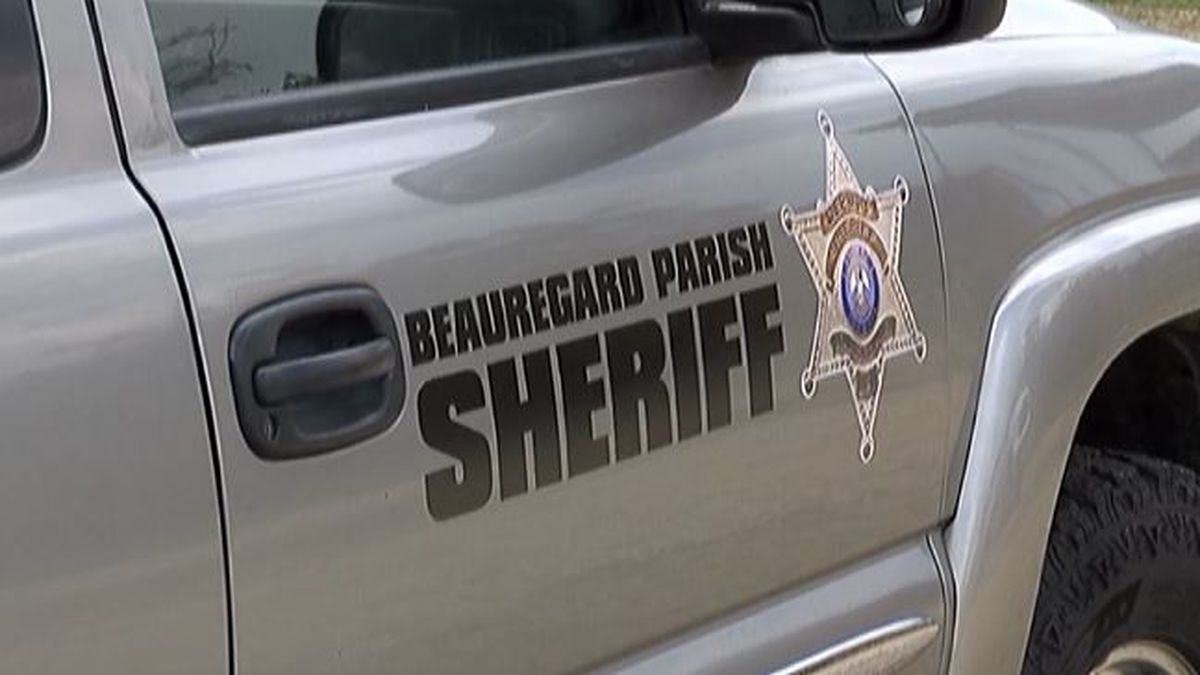 Two lawsuits filed against Beauregard Sheriff's Office in Federal District Court