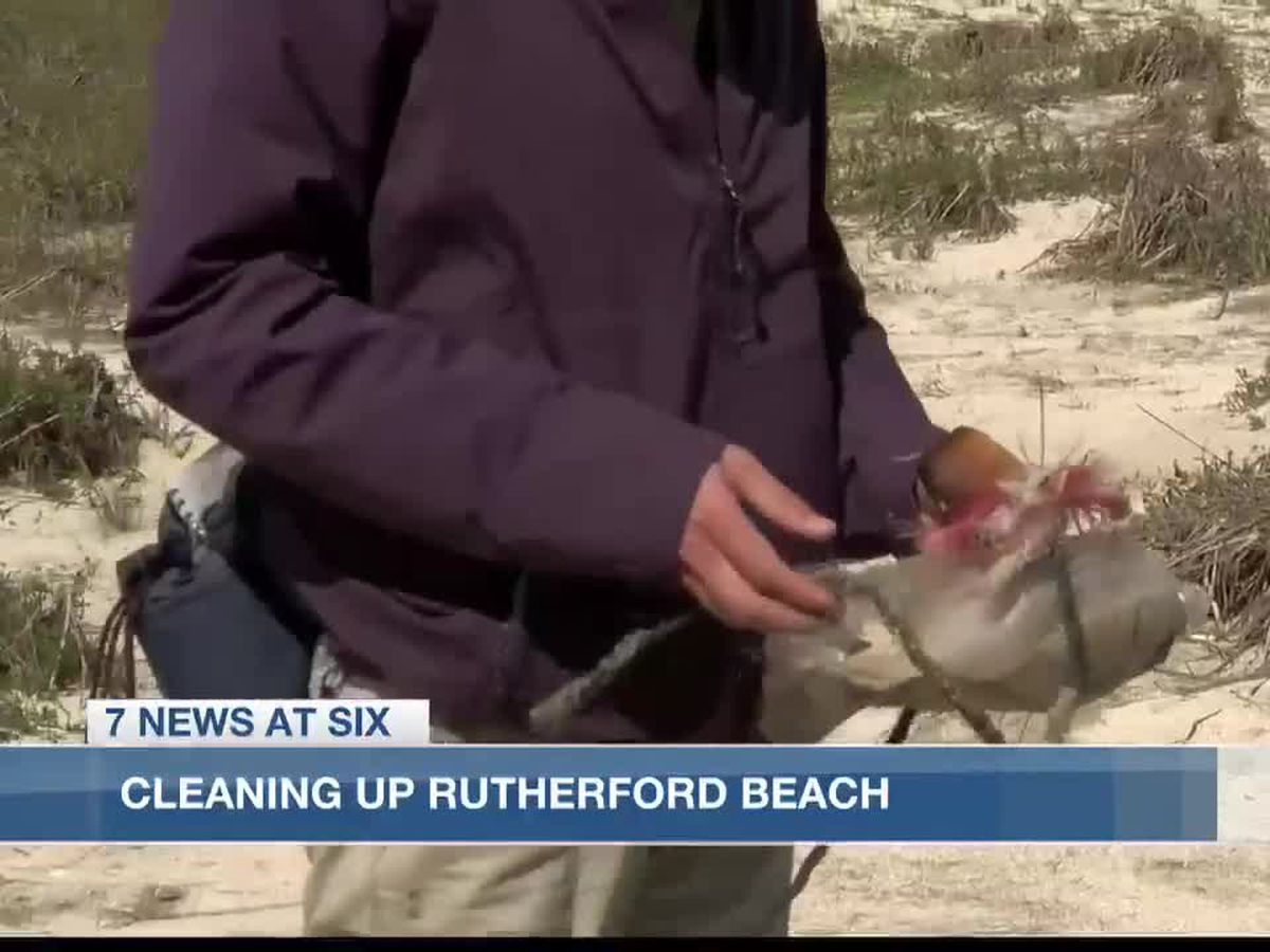 Volunteers gather for cleanup at Rutherford Beach