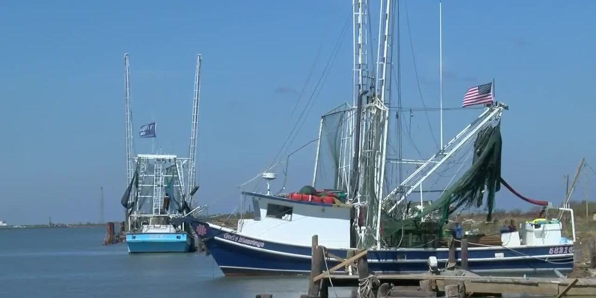 Hurricane Laura takes toll on Cameron seafood industry