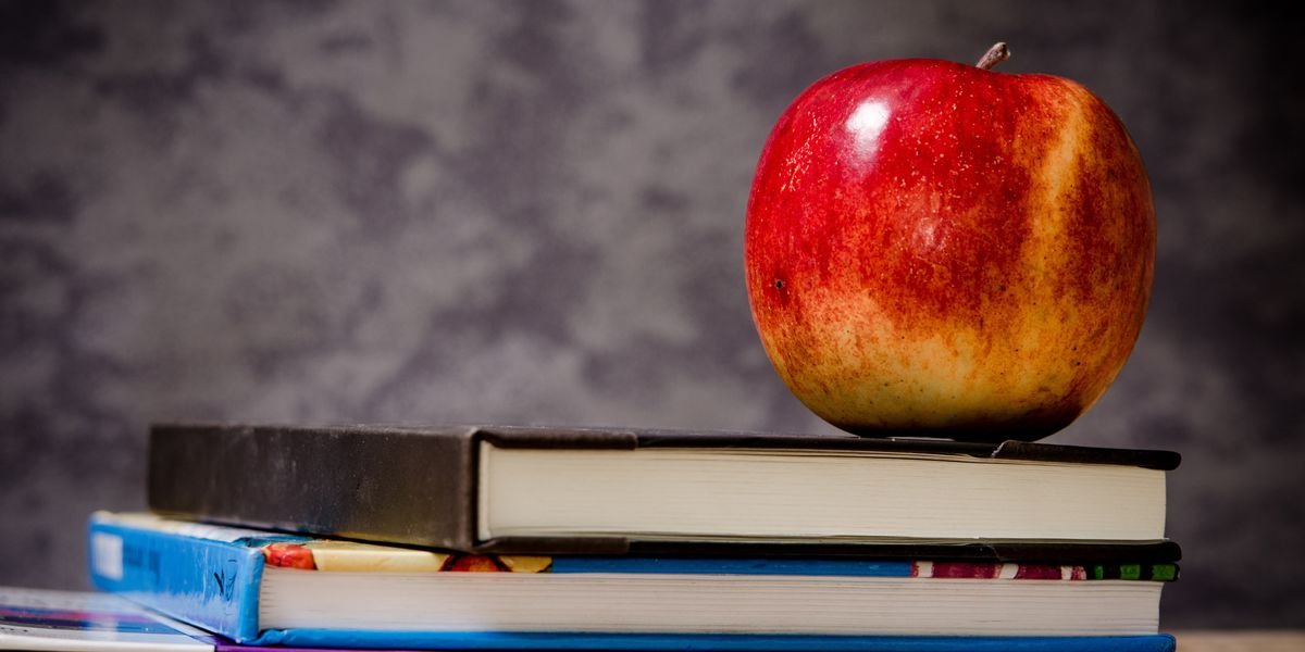 Local educators among state teacher and principal of the year finalists