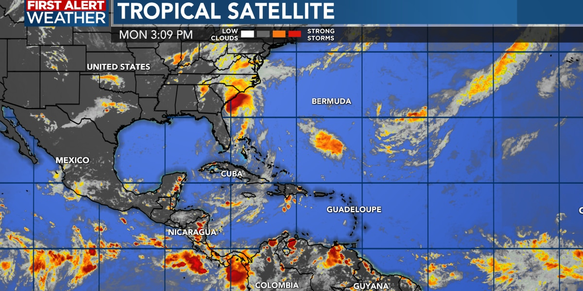 TROPICAL UPDATE: Isaias set to make landfall in the Carolinas